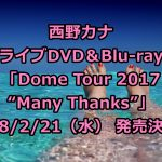 """西野カナライブDVD予約・特典案内!最新「Dome Tour 2017 """"Many Thanks""""」収録曲、最安値など徹底解説"""