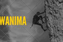 WANIMAライブDVD予約、特典案内!最新エビバデファイナルの最安値、収録曲など詳細